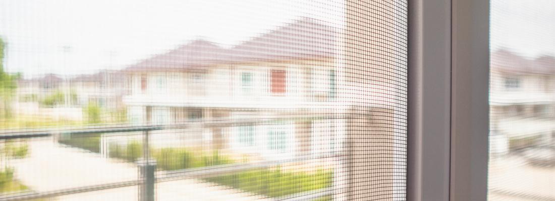 Ochrona domu przed owadami - moskitiery